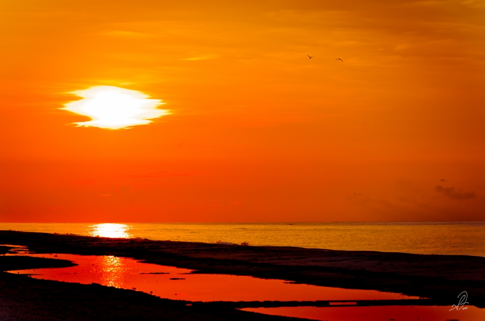 Sun Rise on St George Island, FL