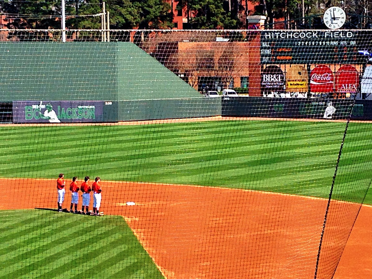 Auburn Tiger Baseball