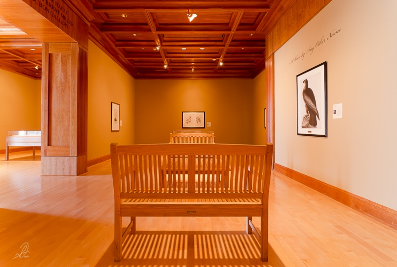 Selections from the inside of the Jule Collins Smith Museum of Fine Art in Auburn Alabama. Collections change throughout the year, admission is free.