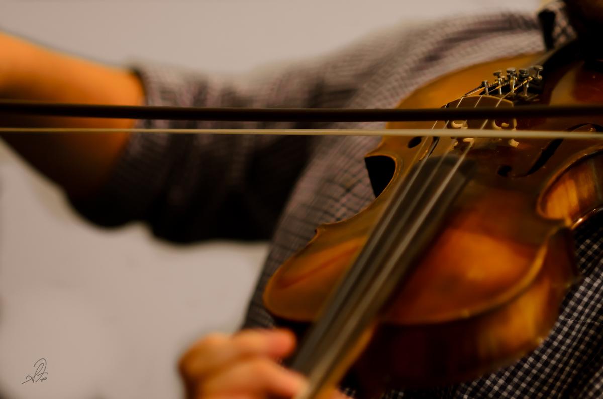 Stringed Worship