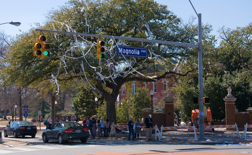 Toomer's Oaks Poisoned
