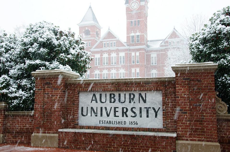 information on auburn university essay