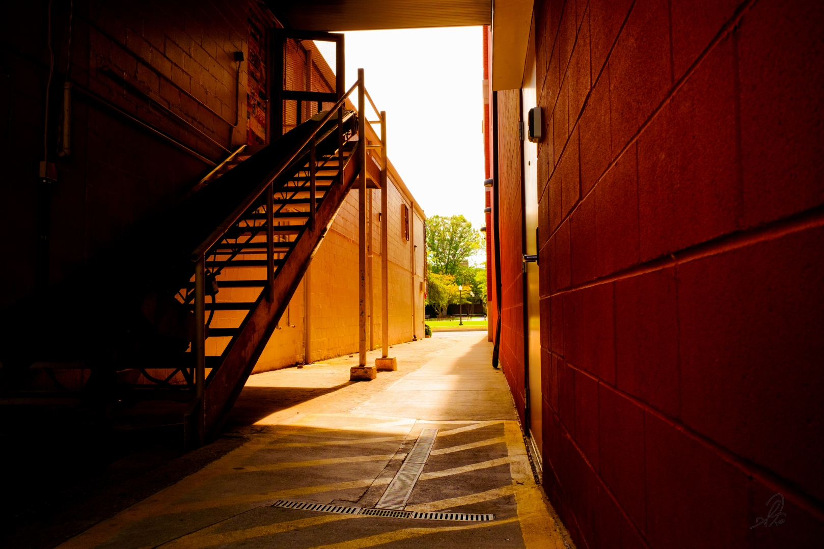 Afternoon Alley Sun
