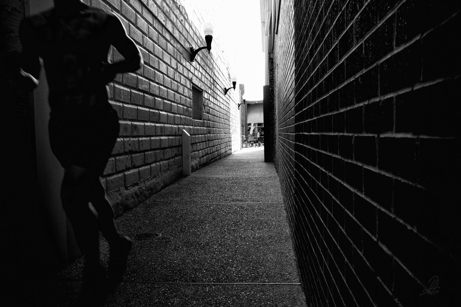 Alley Runner